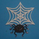 """3"""" Spider and Web"""