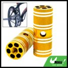 "Golden Two Steel BMX Bike Bicycle 3/8"" Axle Foot Pegs"
