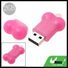 USB 2.0 Pink Bone 2GB Flash Driver Memory Stick
