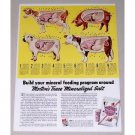 1951 Morton's Free Choice Trace Mineralized Salt Cow Art Color Print Ad