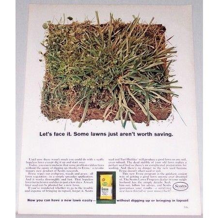 1961 Scotts Erase Grass Killer Color Print Ad