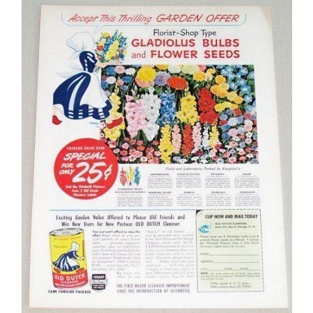 1949 Old Dutch Cleanser Garden Bulbs Seeds Offer Color Print Ad