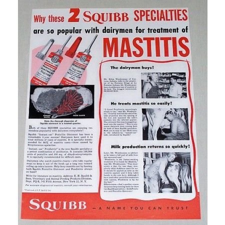 1951 Squibb Veterinary Penicillin Ointment Color Print Ad