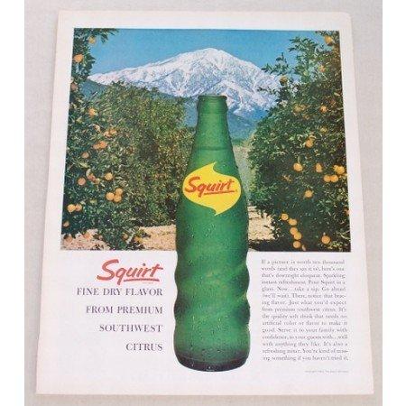 1963 Squirt Soda Soft Drink Southwest Citrus Color Print Ad