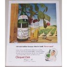1945 Clicquot Club Ginger Ale Cherry Trees Color Print Ad - Rich & Mellow