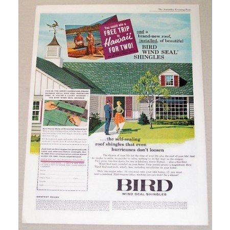 1961 Bird Wind Seal Roof Shingles Color Print Ad