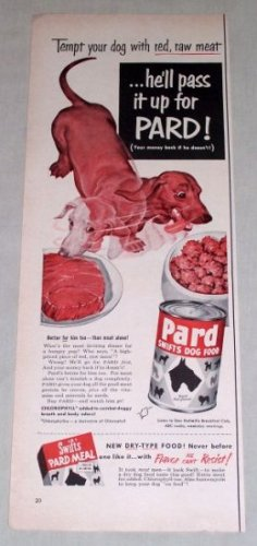 1953 Pard Swifts Dog Food Color Print Ad - Tempt Your Dog