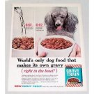1960 Gravy Train Dog Food Poodle Color Print Ad