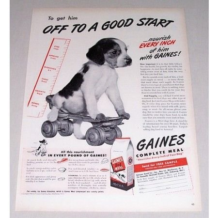 1946 Gaines Dog Meal Vintage Print Ad - Puppy On Roller Skate