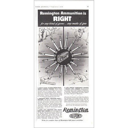 1938 Remington Ammunition Vintage Print Ad - Right For Any Game