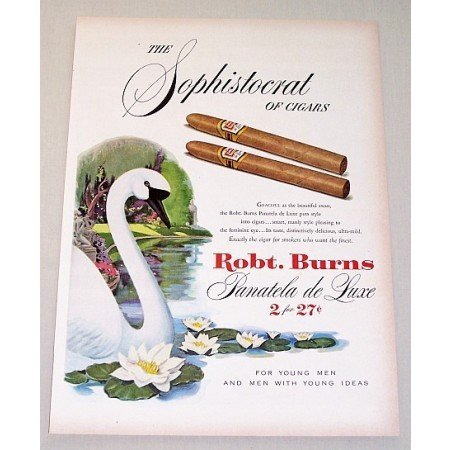1951 Robt. Burns Panatela Deluxe Cigars Swan Animal Art Color Print Ad