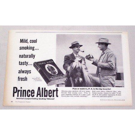 1959 Prince Albert Pipe Tobacco Vintage Print Ad - Pony Breeder