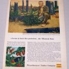 1956 Weyerhaeuser Timber Company Oregon Tillamook Forest Color Art Print Ad Nelson Rogers