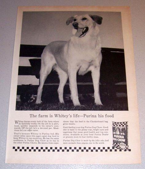 1959 Print Ad Purina Dog Chow