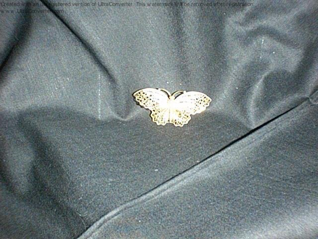 Lovely butterfly pin