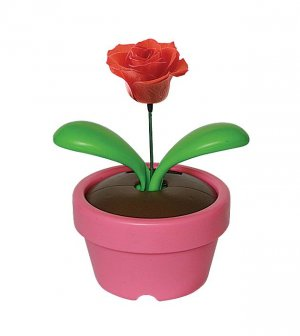 solar craft (swaying flower)
