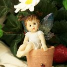 Kitchen Fairy on Sunflower Pot
