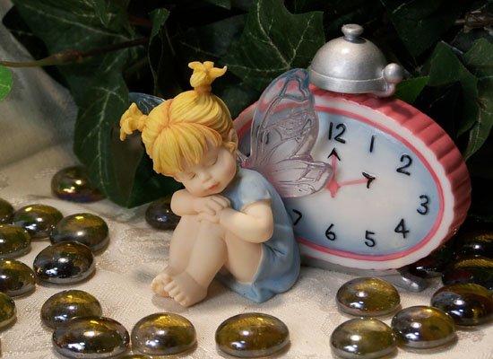 Kitchen Fairy Night Watch