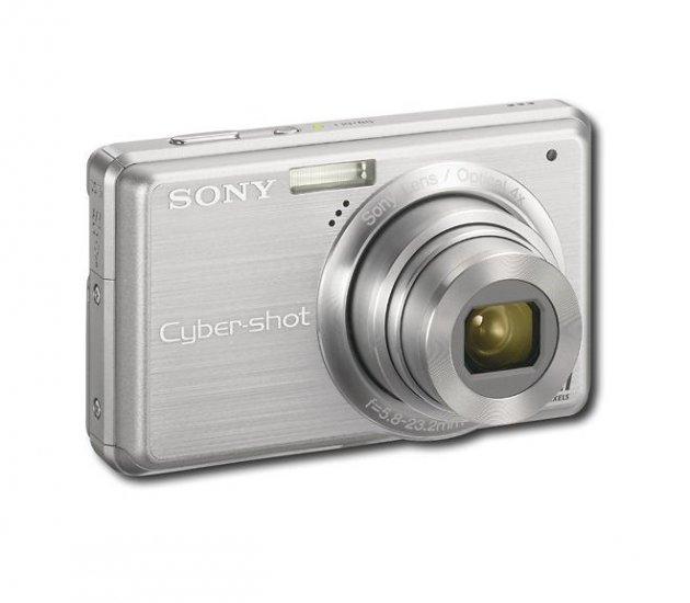 Sony - Cyber-shot 10.1-Megapixel Digital Camera - Silver