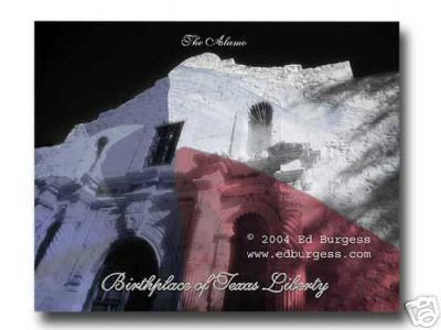 """TEXAS"" Alamo Texas Flag Freedom Liberty Fine Art Photograph B&W with color"