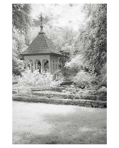 """Cupola # 11 "" Austin Texas Zilker Park Fantasy Infrared Landscape Fine Art Photo Garden"