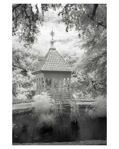 """Cupola # 9"" Austin Texas Zilker Park Gazebo Infrared Landscape Fine Art Photo trees"