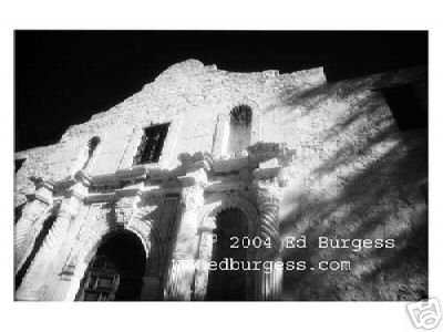 """Alamo"" Alamo Texas Landscape Infrared Fine Art Photo"