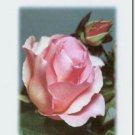 #M4U0571 Happy Birthday Greeting Card for Sister