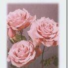 #M4U0185 Lavender Flowers Get Well Greeting Card