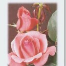 #M4U0264 Pink Roses Miss You Greeting Card