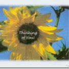 #M4U0133 Yellow Sunflower Thinking of You Greeting Card