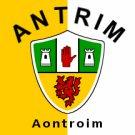 Antrim County Crest Flag
