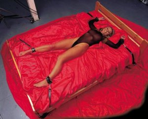 LEATHER BED STRAPS