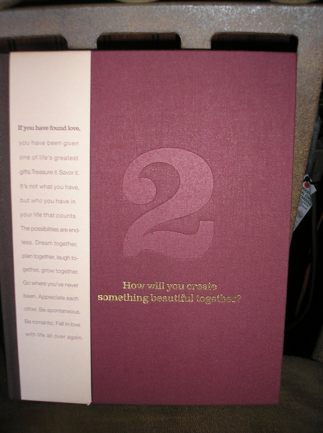 2: HOW WILL YOU CREATE SOMETHING BEAUTIFUL TOGETHER? book by Dan Zadra,Kobi Yamada & M.H. Clark-NEW!