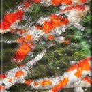 ABSTRACT ORANGE KOI