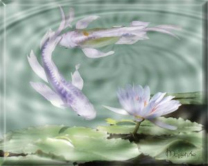 2 KOI WITH PURPLE LILY