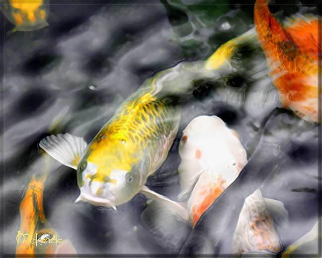Japanese ART Yellow Koi fish Pond Feng shui PAINTING