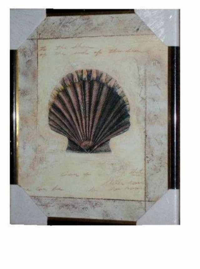 Seashell Print Wall Art Beach Decor