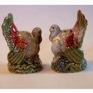 Thanksgiving Turkey Salt Pepper Shakers Set