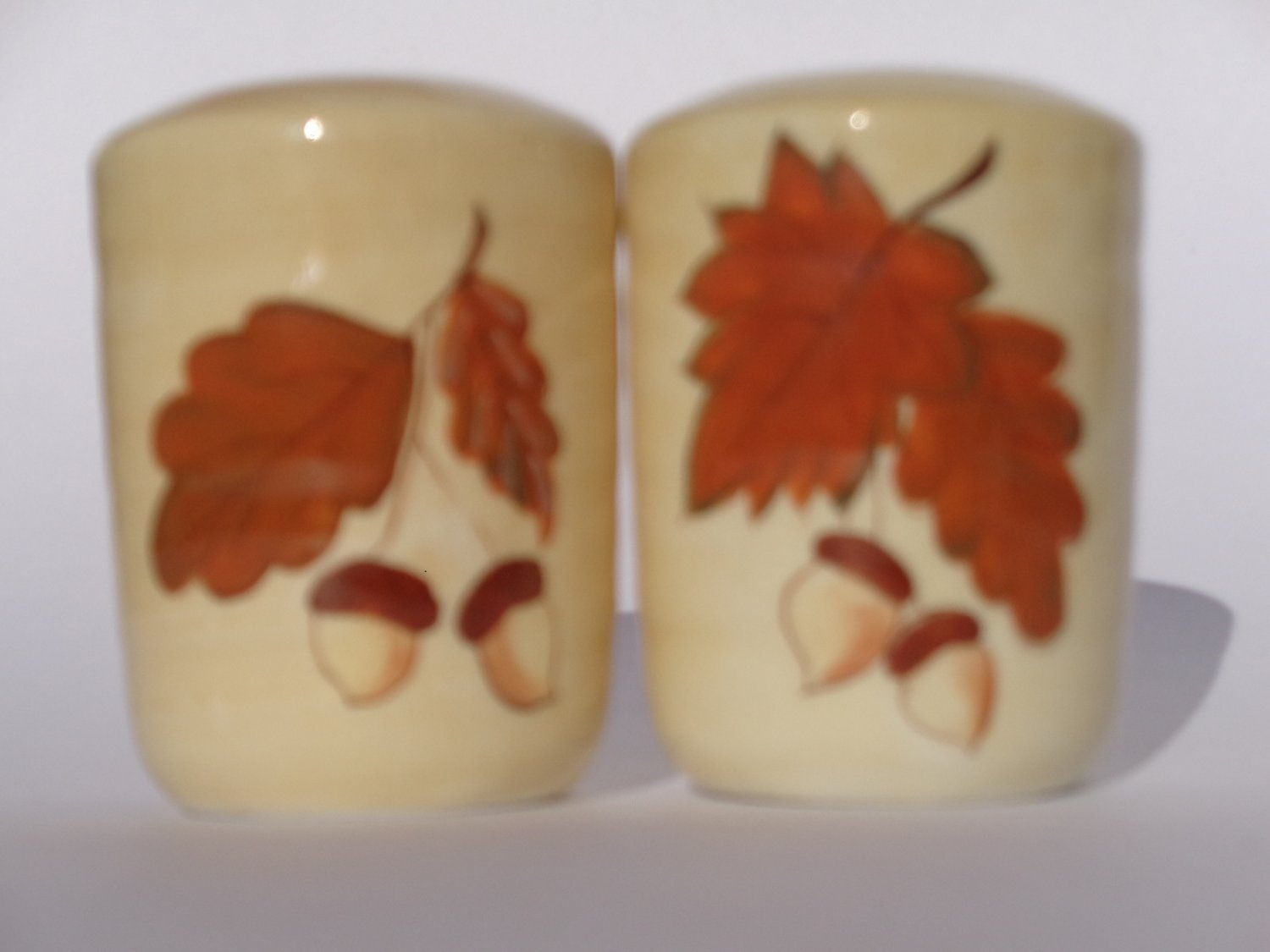 Maple Leaves Acorns Salt Pepper Set Fall Decor