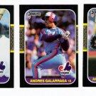 1987 Donruss Montreal Expos Team Set-22 Cards
