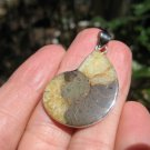 African Ammonite fossil pendant necklace dinosaur era 925 silver jewelry art