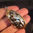 925 Silver African Turban Shell  pendant Thailand jewelry art  A4