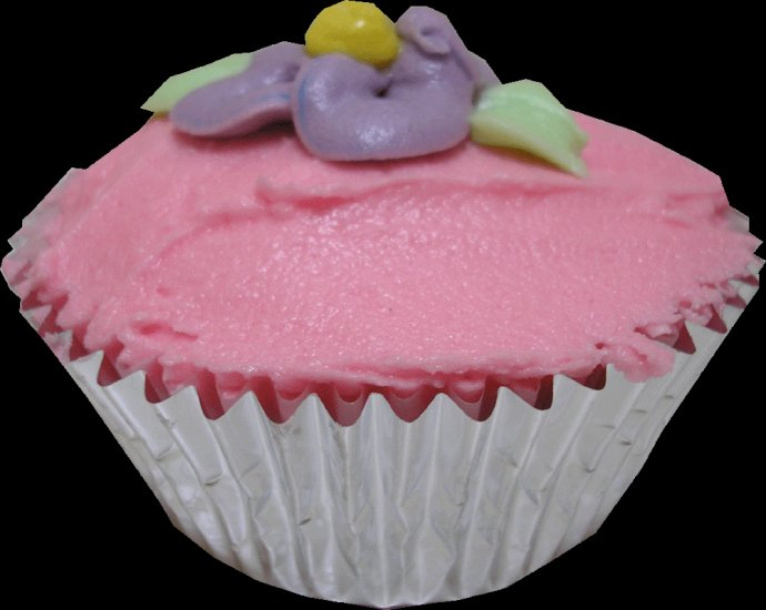 Vanilla cupcakes - Coloured
