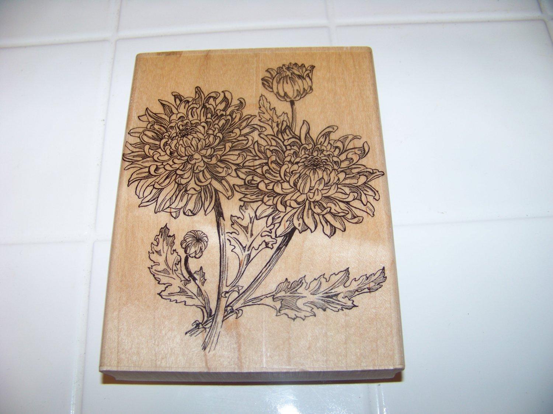 large November's chrysanthemum rubber stamp 1997 embossing arts