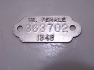 vintage Virginia VA aluminum female dog tag 1948 pet license