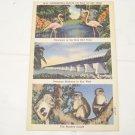 vintage postcard the Overseas Highway to Key West