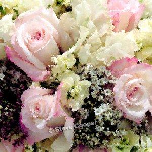 Watercolor Roses - 22 x 22