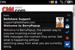 BerryPopup