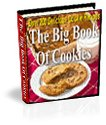 The BIG Ebook Of Cookies